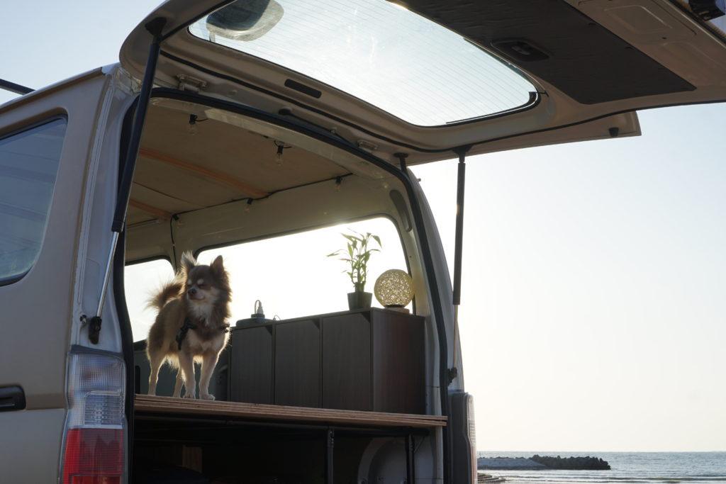 back side of a camper van with open door
